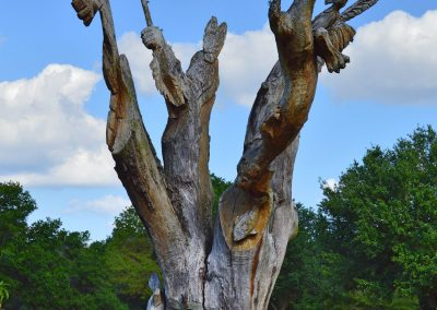 Red Hawk Ranch  carved tree